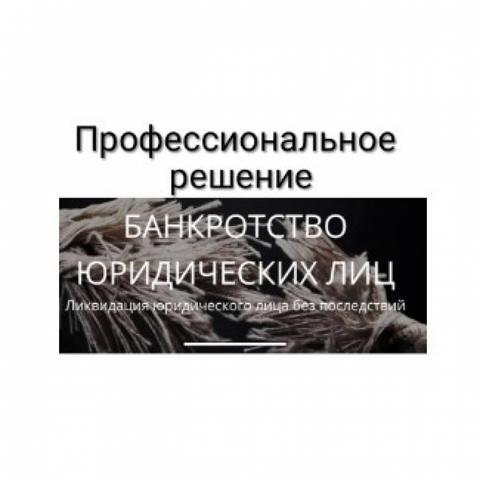 Элла Снеткова