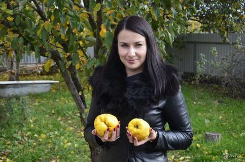 Елена Нечаева